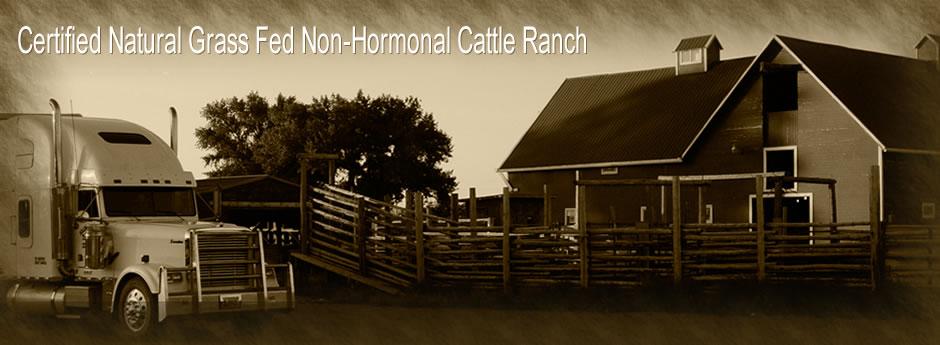 Arapaho Ranch